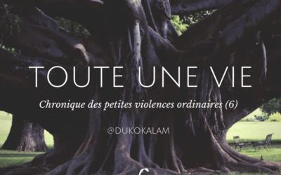 Chronique des petites violences ordinaires (6)